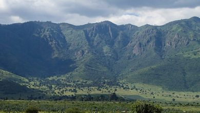 Photo of Pare Mountains