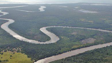 Photo of Saadani National Park