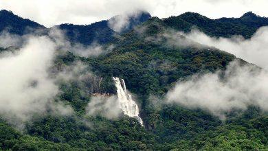 Photo of Udzungwa National Park